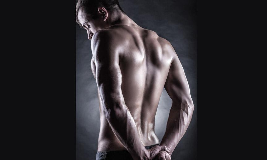 Male muscular back