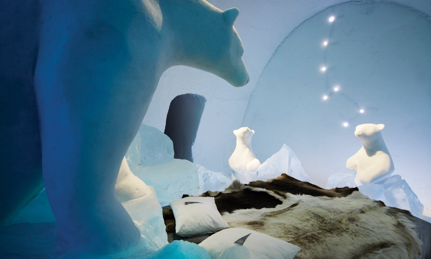 polar bear–themed suite