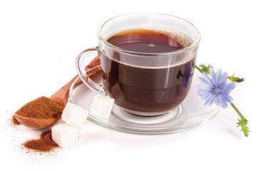 chocory tea