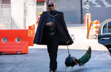 tituss walking peacock