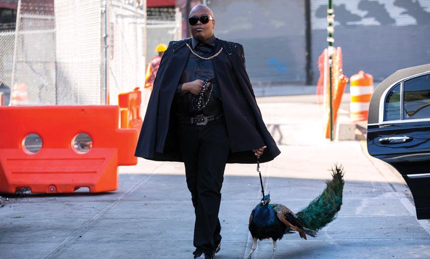 tituss walking peacock