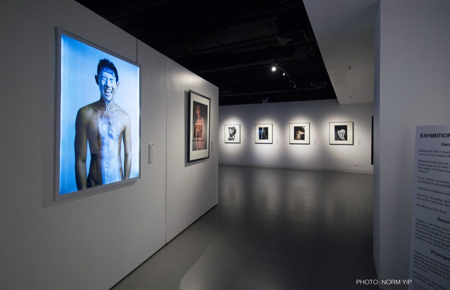 gallery of Beyond Skin exhibit
