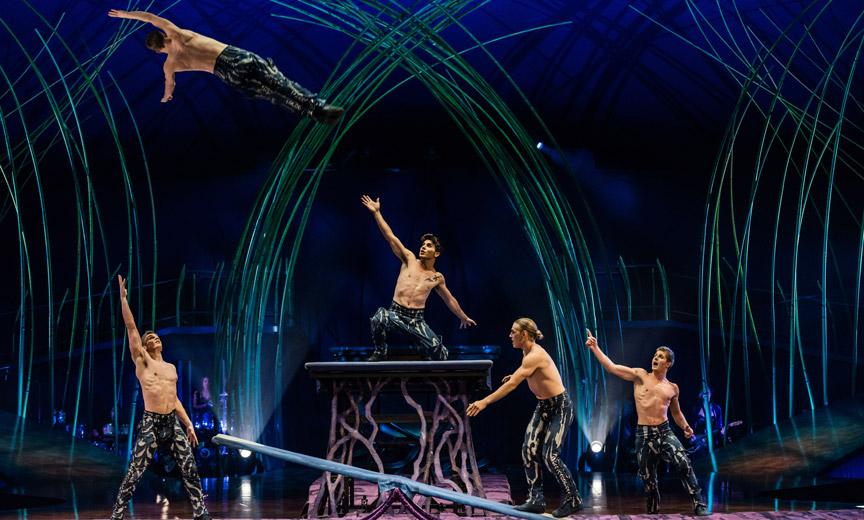 Amaluna Teeterboard courtesy Cirque du Soleil
