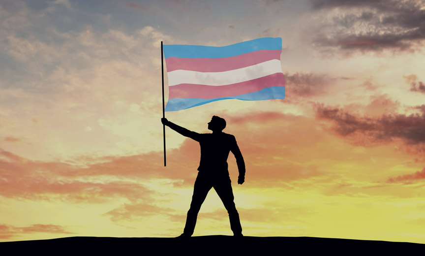 Figure Holding Trans Rights Flag