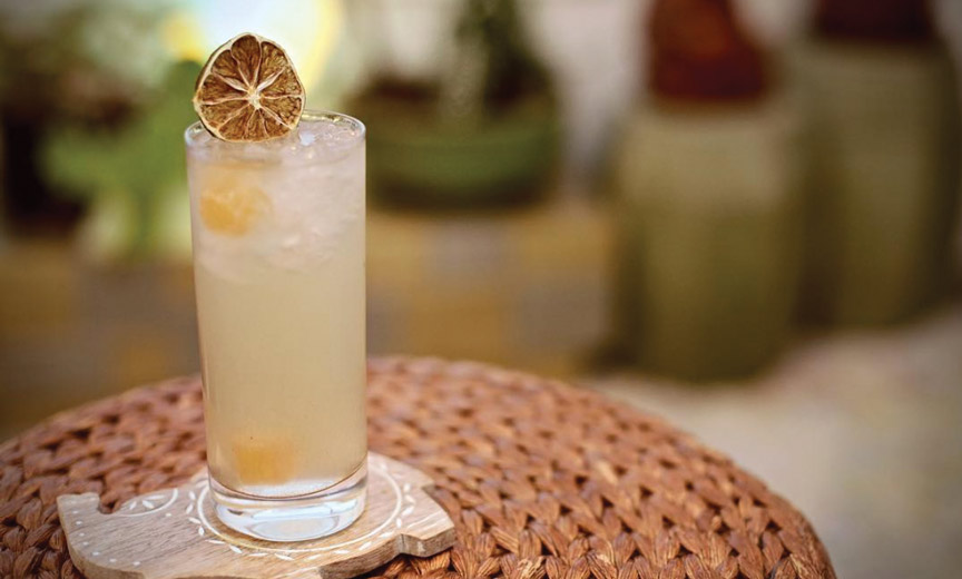 Elixers of Life: The Mocktail
