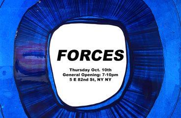 forces flyer