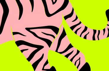 tiger in heels illustration